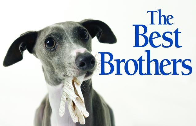 BestBrothers(sm)