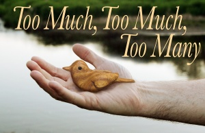 Too Much, Too Much, Too Many By Meghan Kennedy